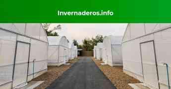 Invernaderos.info