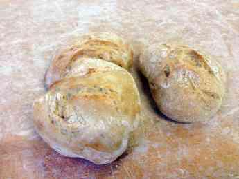 Bizkarra desarrolla nuevos alimentos funcionales