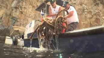 Foto de Brigada del Mar en activo