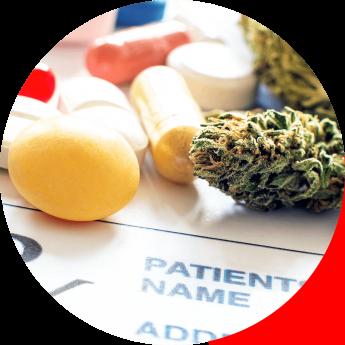 Noticias Formación | Curso Cannabis Medicinal - Cannabity Healthcare