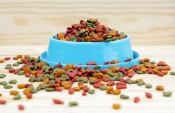 Mascota Planet aumenta la variedad de productos