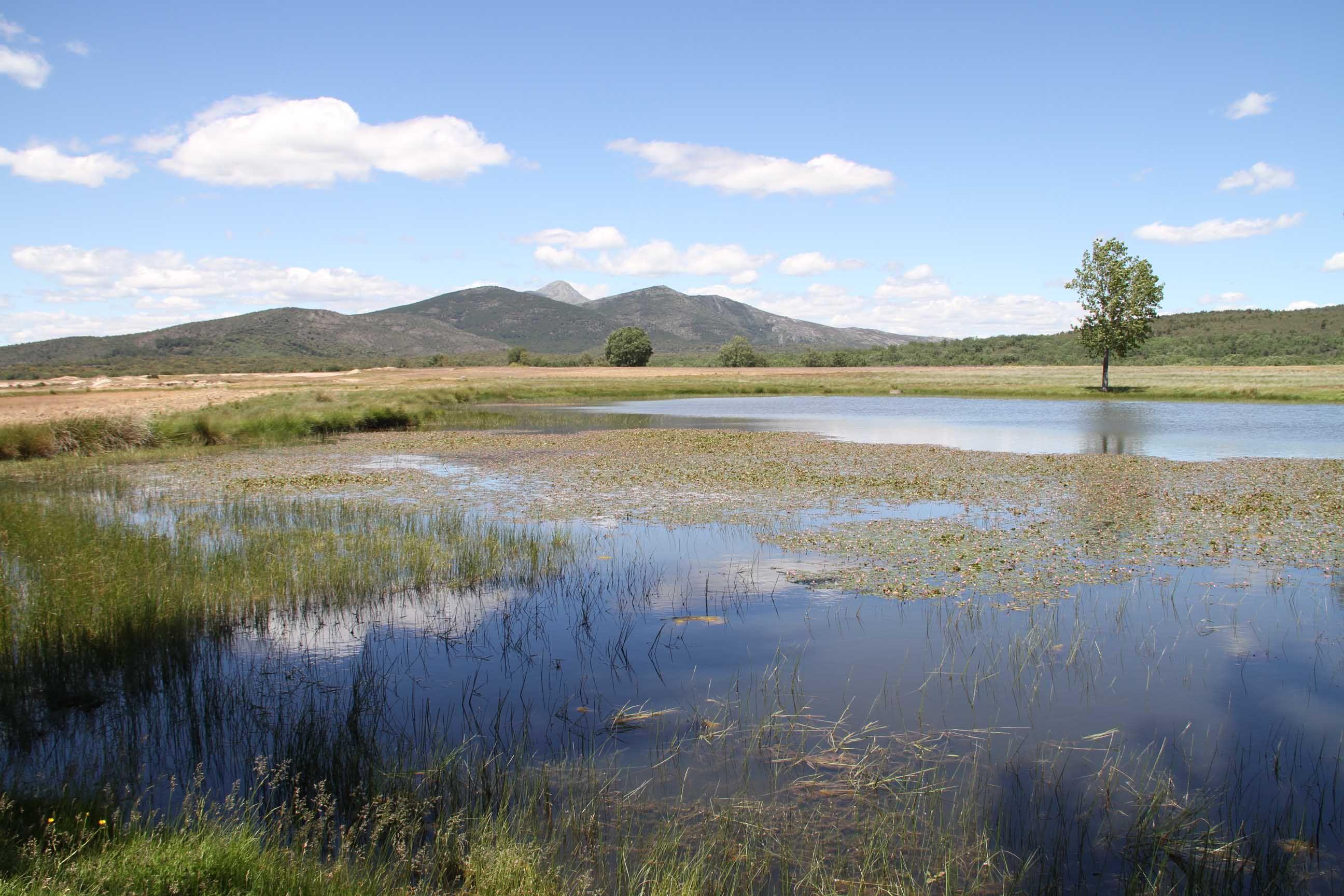 Foto de Sierra Norte de Guadalajara