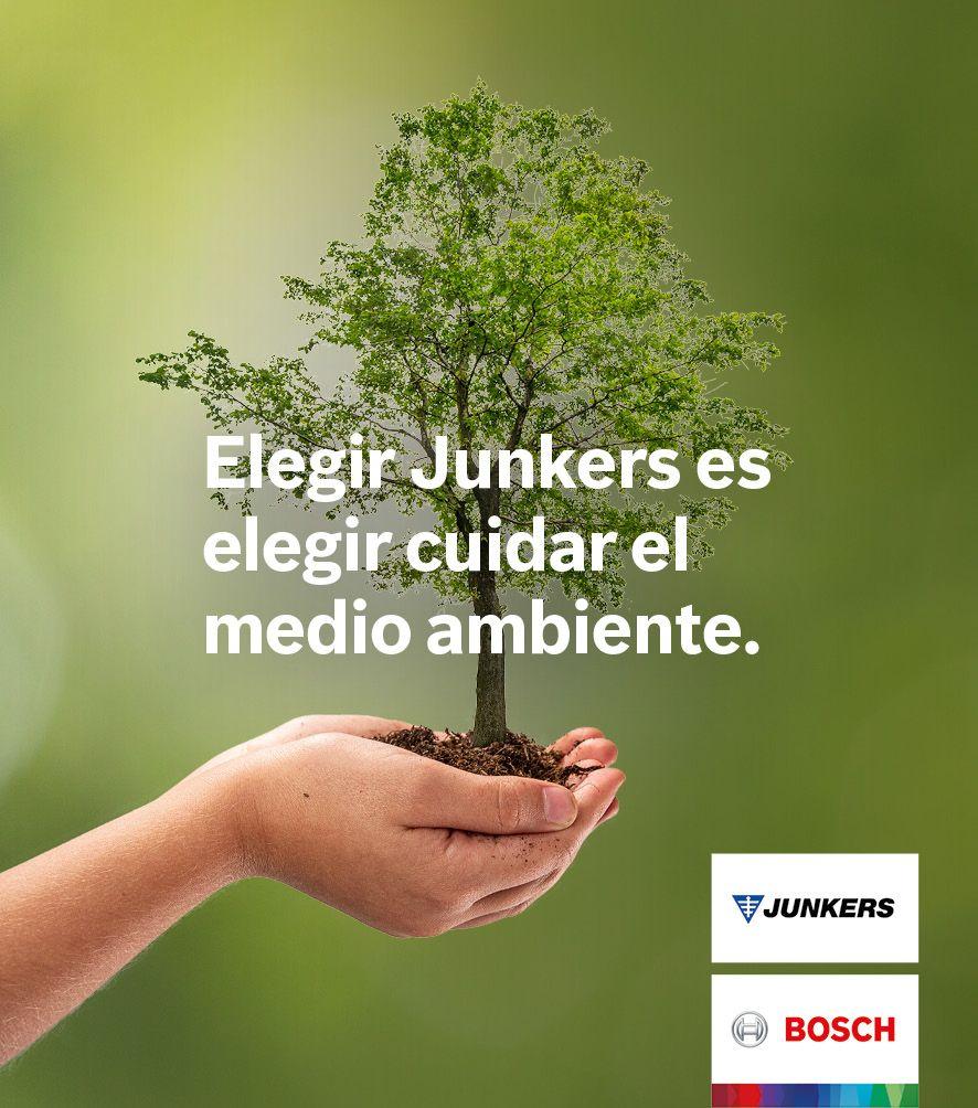 Foto de Sostenibilidad: Junkers contribuye a la reforestación en