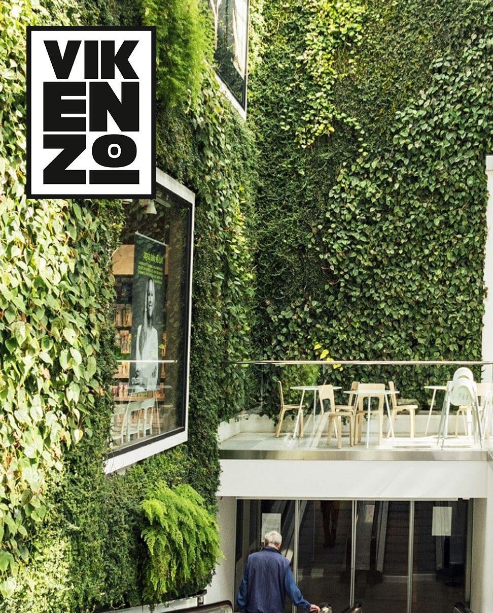 Fotografia VIKENZO NATURE: Los beneficios de los jardines verticales
