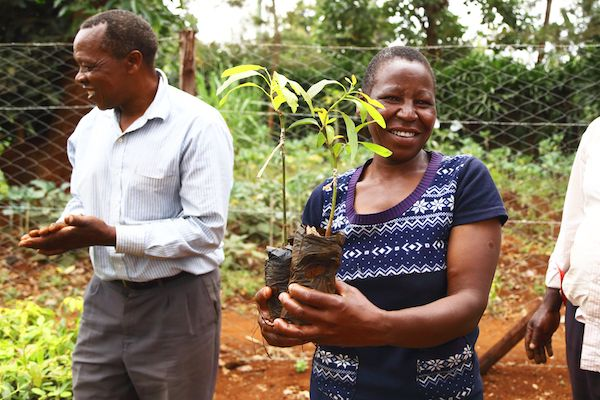 Fotografia Kenya - Una mujer acaba de recibir los árboles para