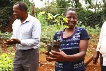 Kenya - Una mujer acaba de recibir los árboles para plantar.jpg