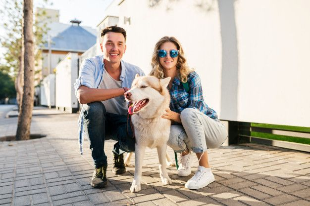 Foto de Divorcio con mascotas