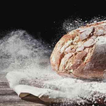 Conceptos clave del pan