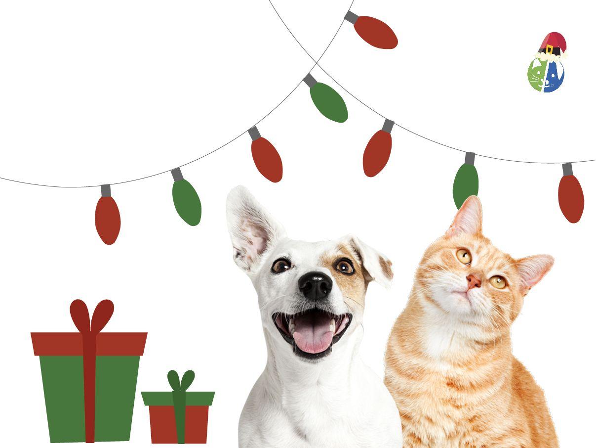La Navidad en Mascota Planet