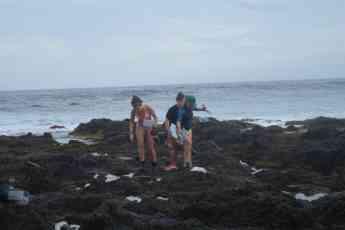 Foto de El equipo procede a la toma de muestras