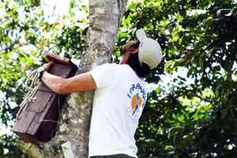 Foto de Loro Parque Fundación dedicará casi 1,3 millones a
