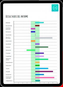 Foto de Imagen del informe de competencias generado con la