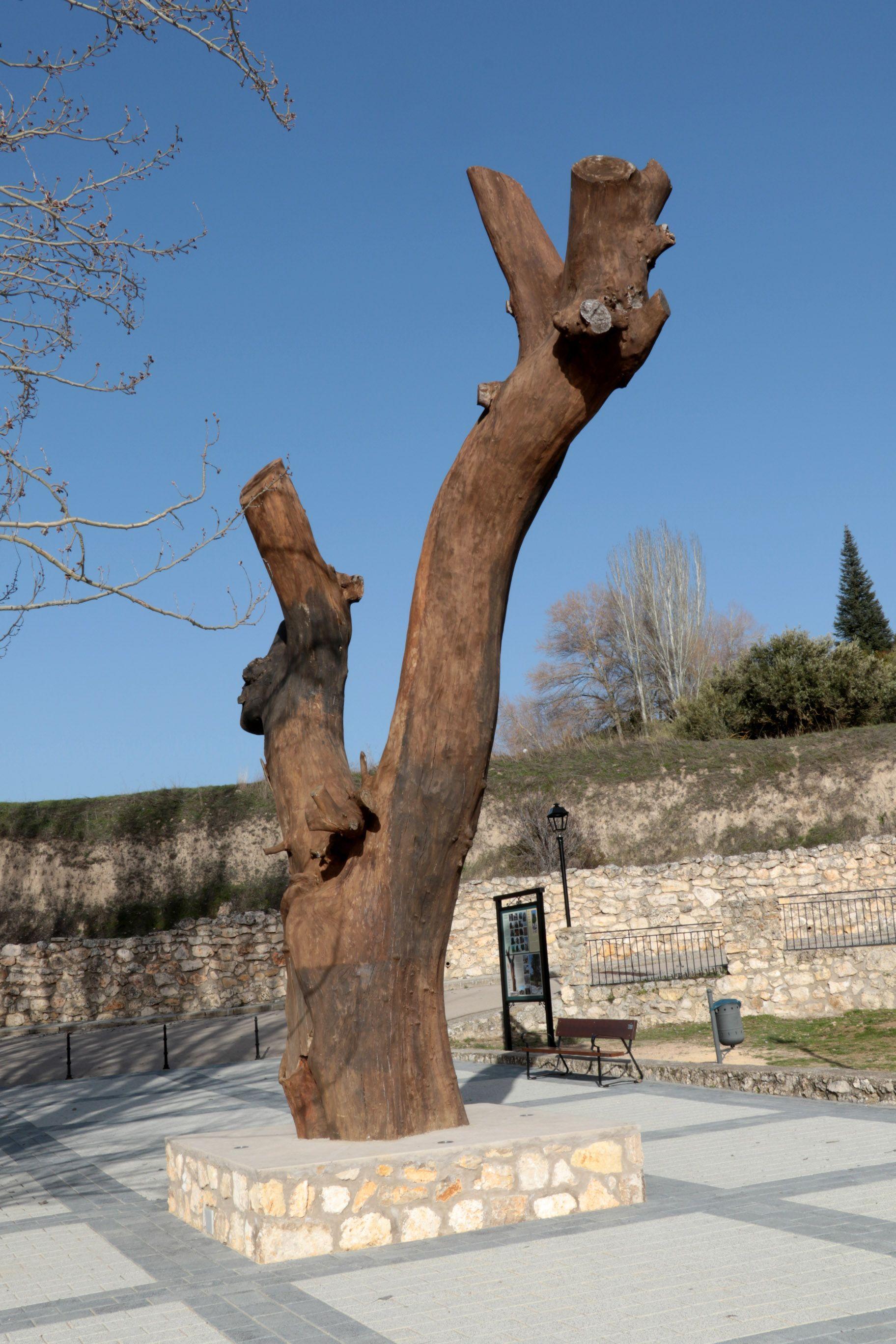Pareja embellece y completa progresivamente el Parque de la Olma Vieja