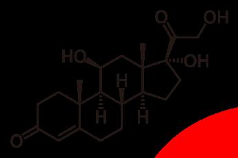 Noticias Mujer | Forma química del Cortisol