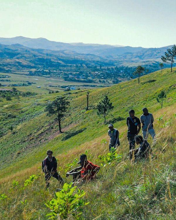 Foto de Plantación de Treedom en África