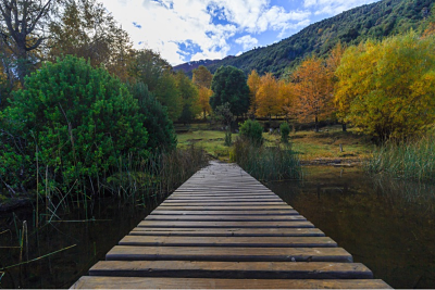 Foto de Chile Travel