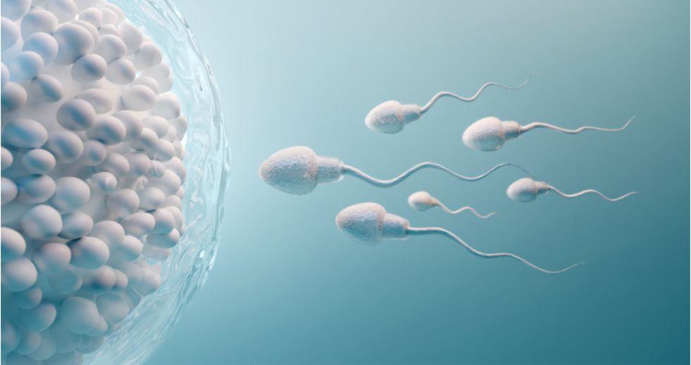 Claves para preservar la fertilidad en tiempos de la COVID