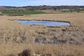 Foto de La Laguna de Madrigal en Paredes de Sigüenza, lugar