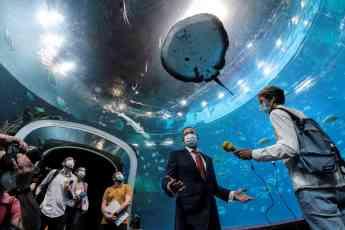El gran acuario Poema del Mar reabre sus puertas al público tras