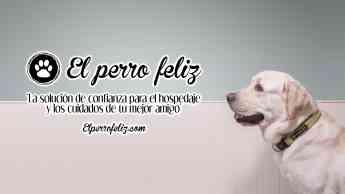El Perro Feliz