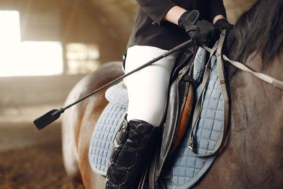 Foto de Equipamientos imprescindibles para la equitación