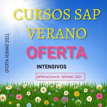 Noticias Emprendedores   CURSOS SAP VERANO