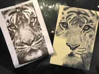 Foto de Tatuaje de Tigre Realista