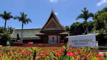 Loro Parque y Siam Park amplían su horario de lunes a domingo