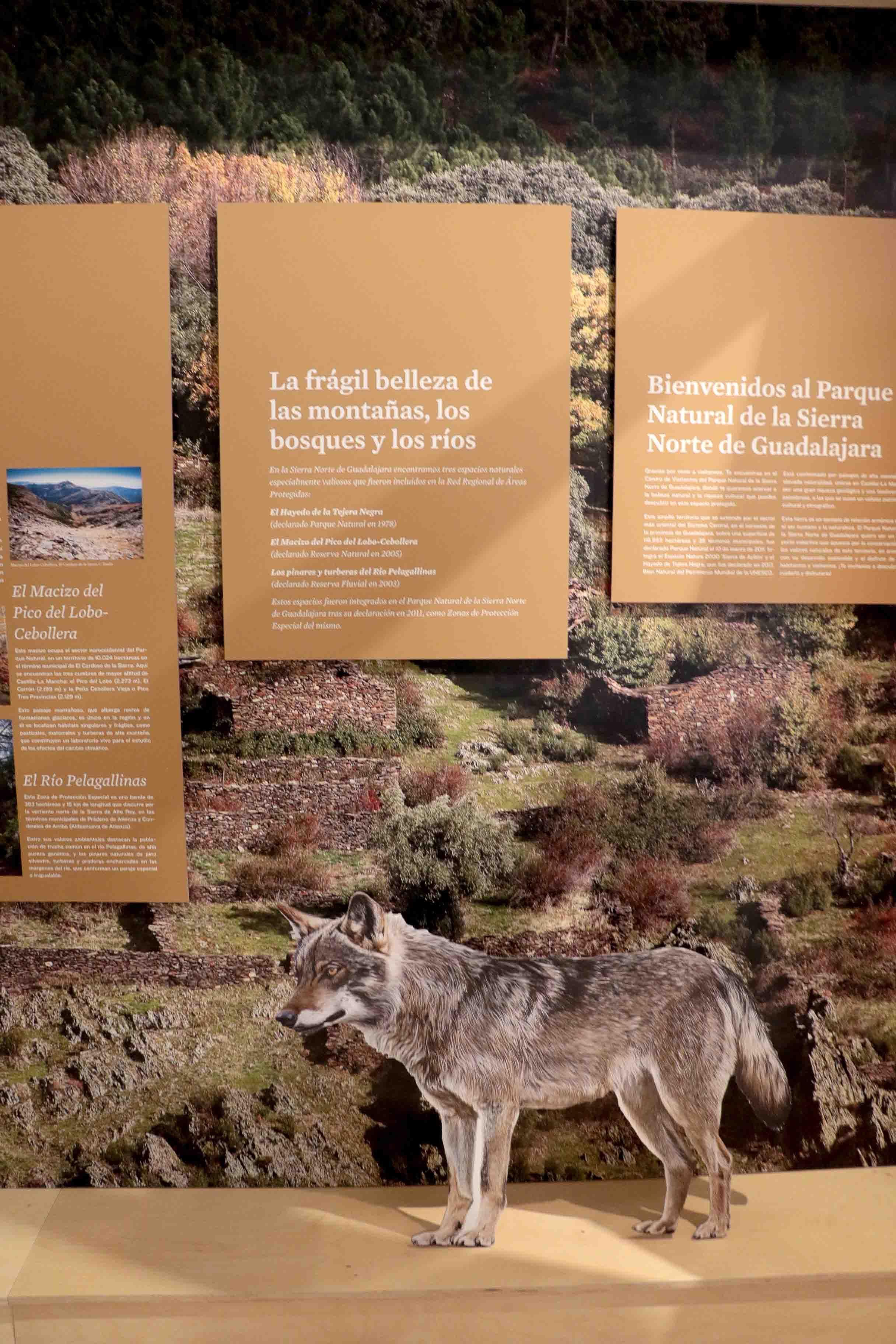 Fotografia Cogolludo, puerta abierta al Parque Natural de la Sierra