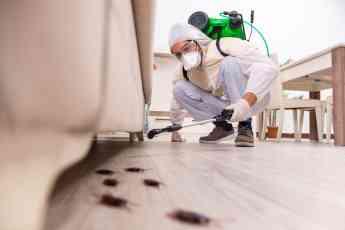 Profesional de control de plagas eliminando una plaga de insectos en